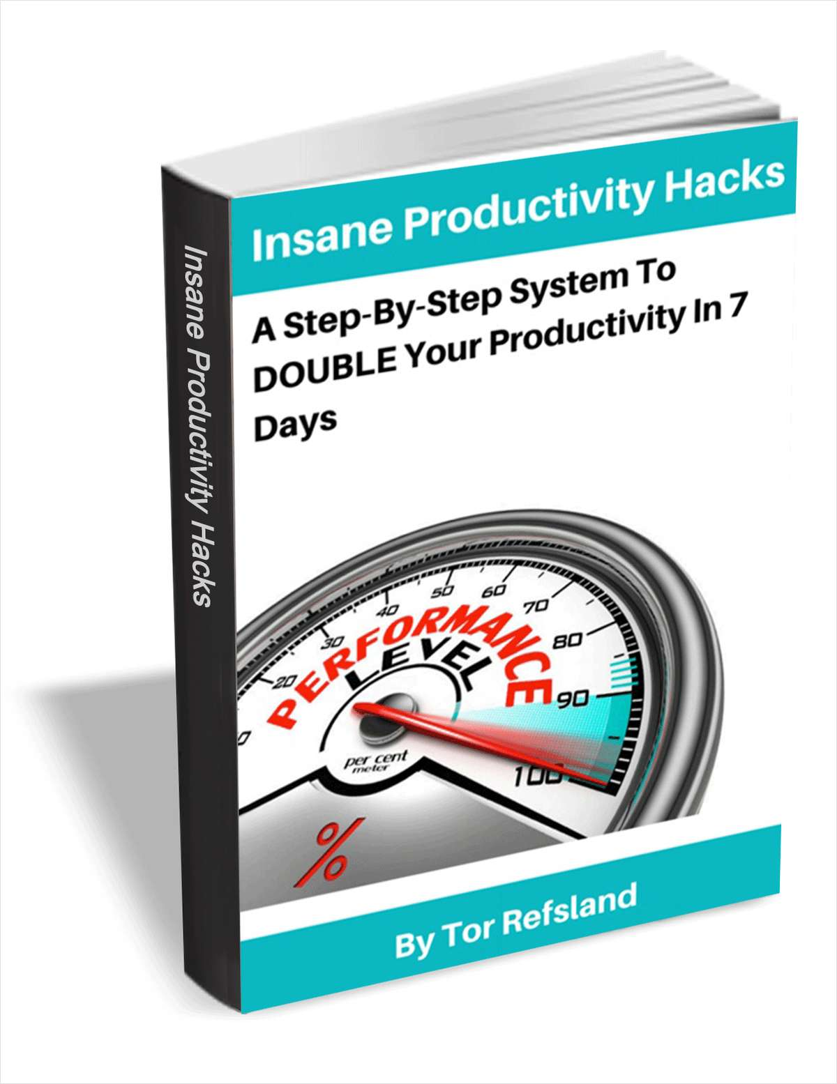 Insane Productivity Hacks - A Step-By-Step System to Double Your Productivity in 7 Days