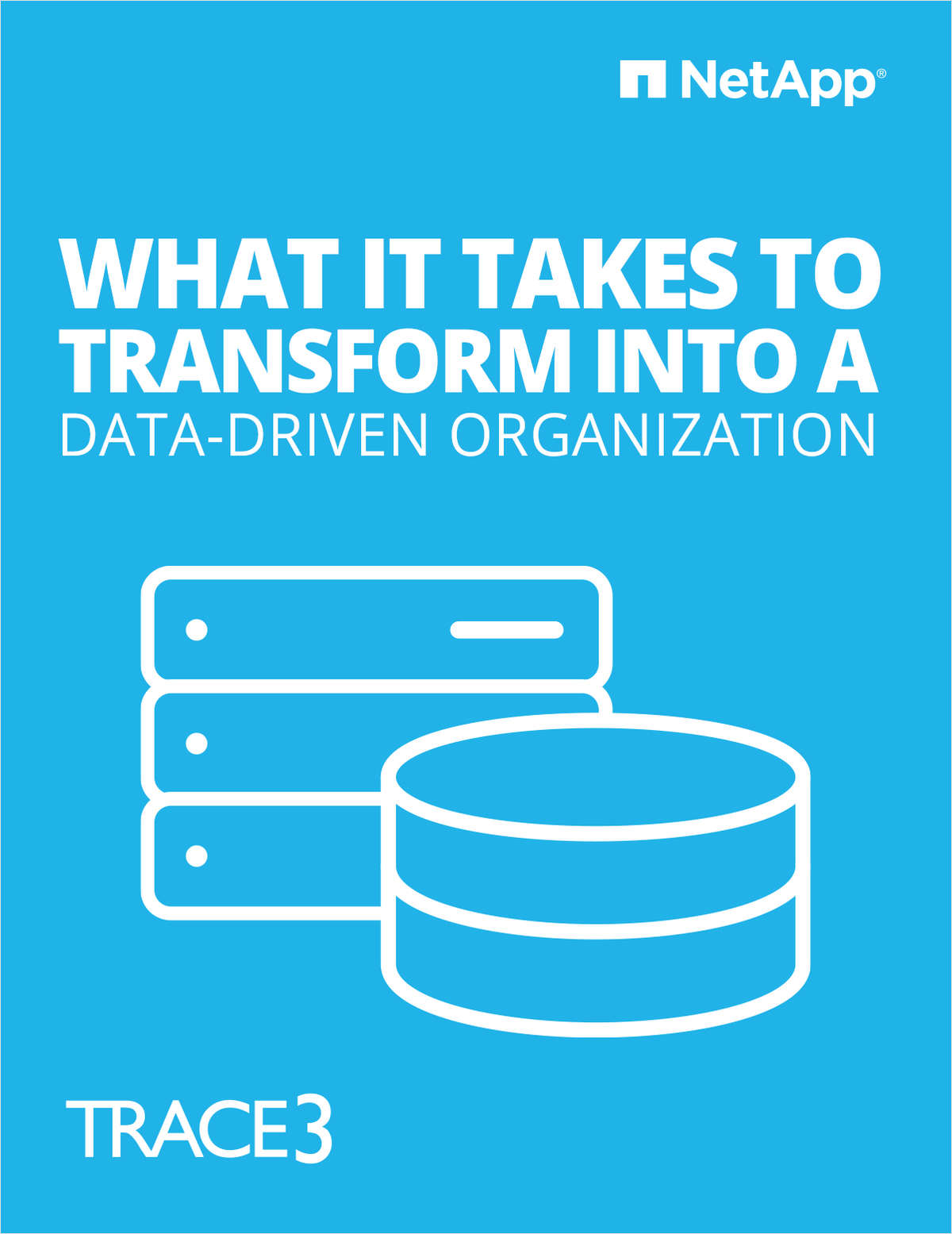 What it takes to transform into a data-driven organization