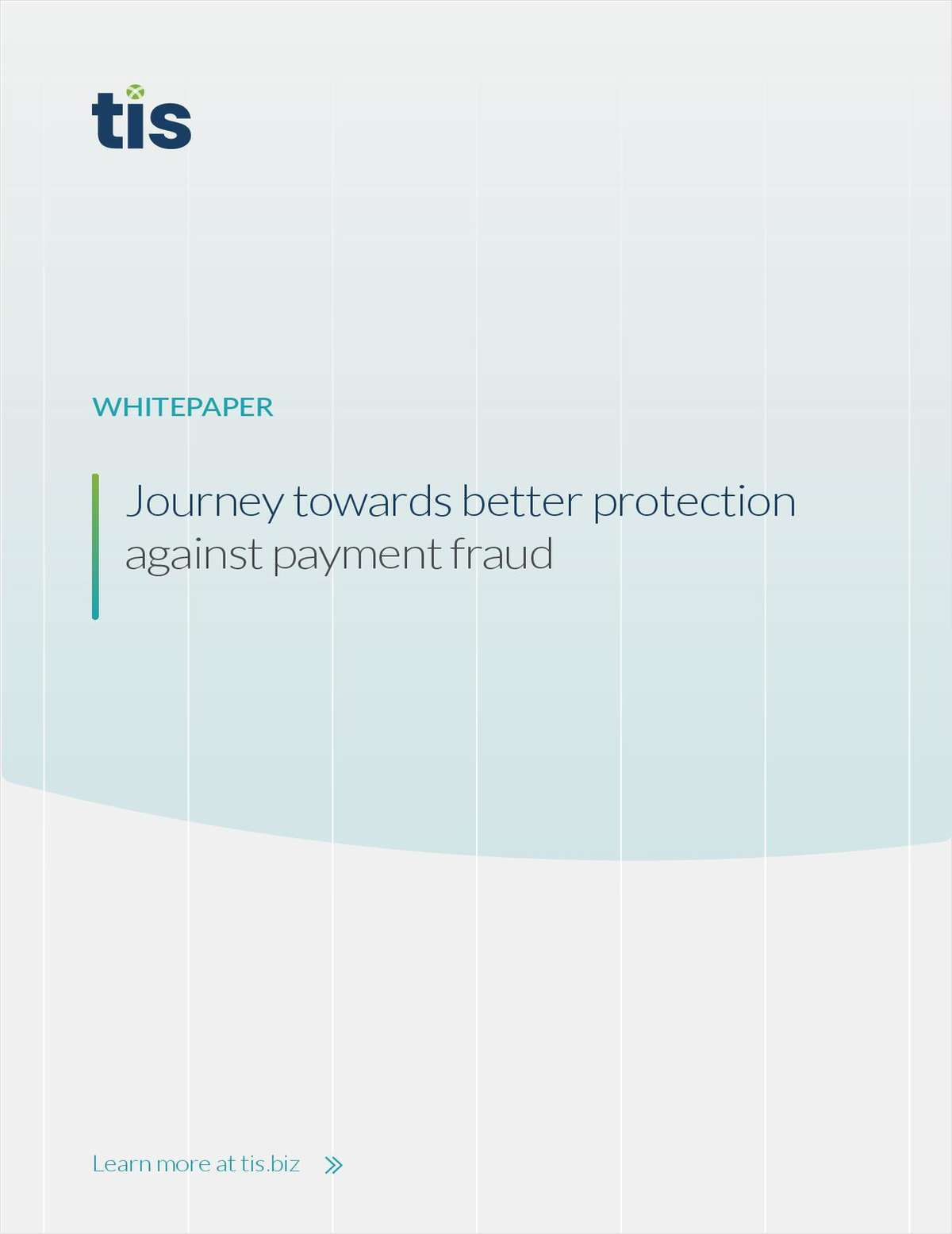 Journey Towards Better Protection Against Payment Fraud