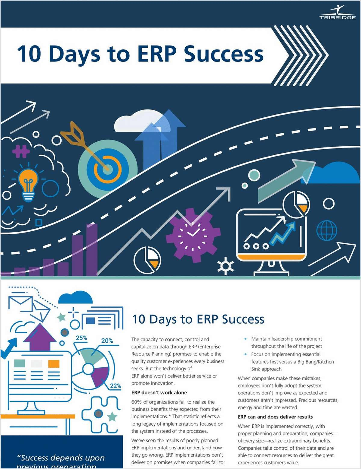 10 Days to ERP Success