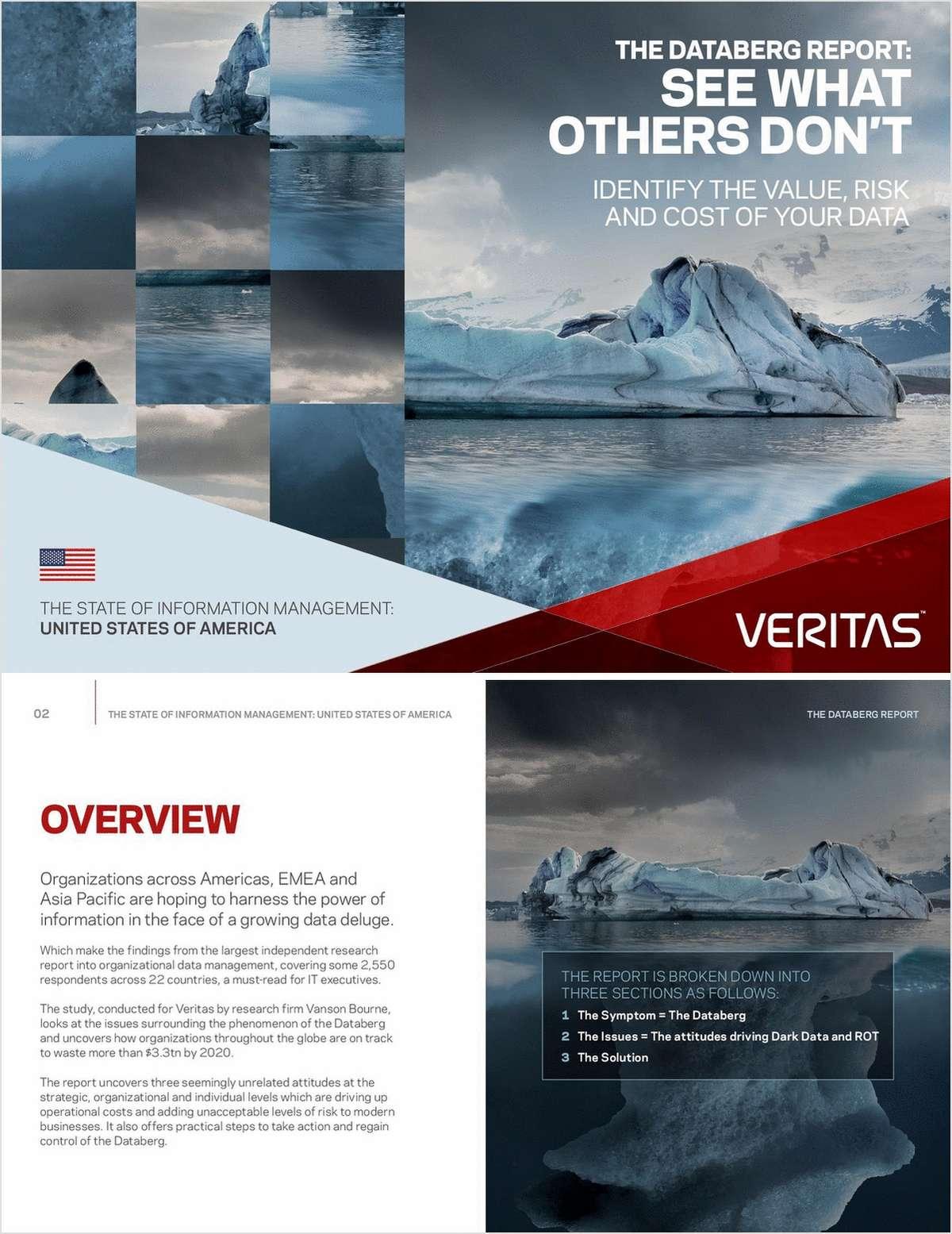 Databerg Report Executive Summary