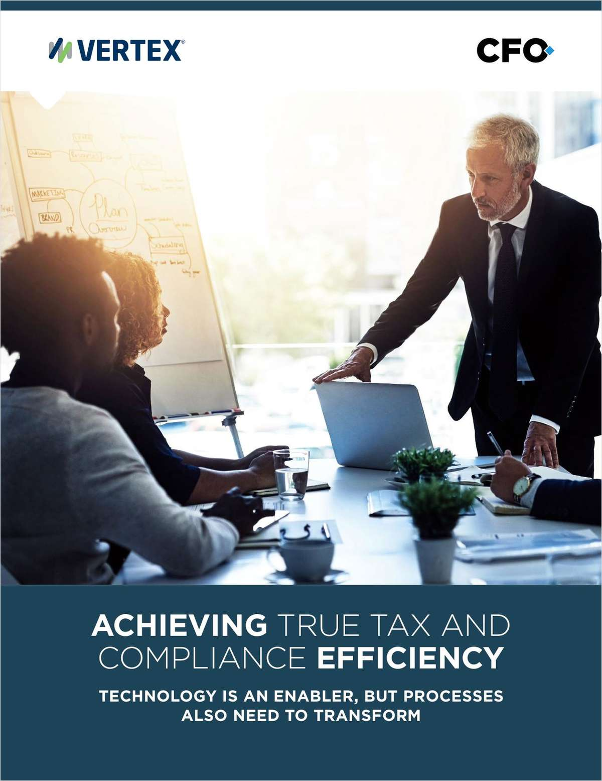 ACHIEVING TRUE TAX AND COMPLIANCE EFFICIENCY