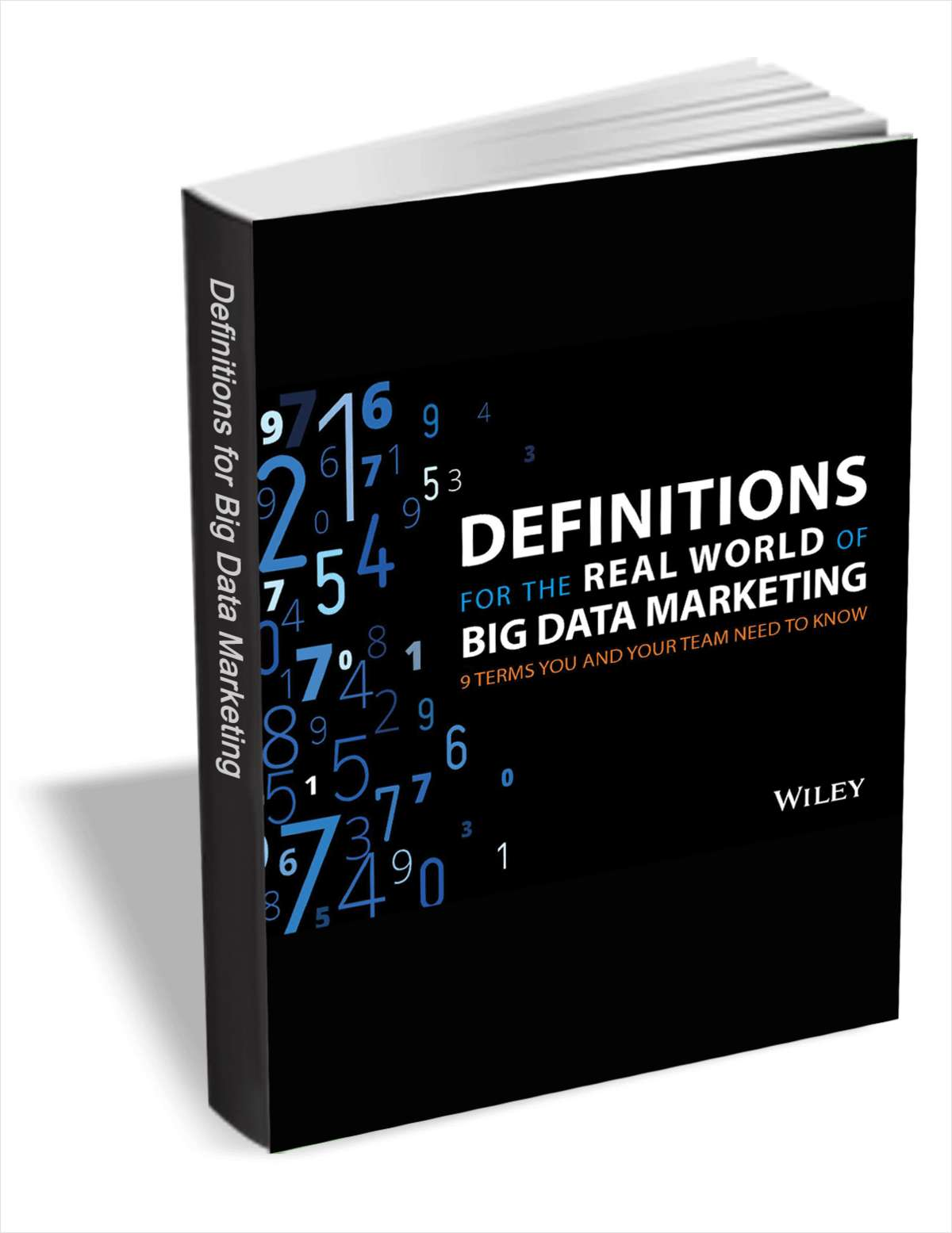 Definitions for the Real World of Big Data Marketing