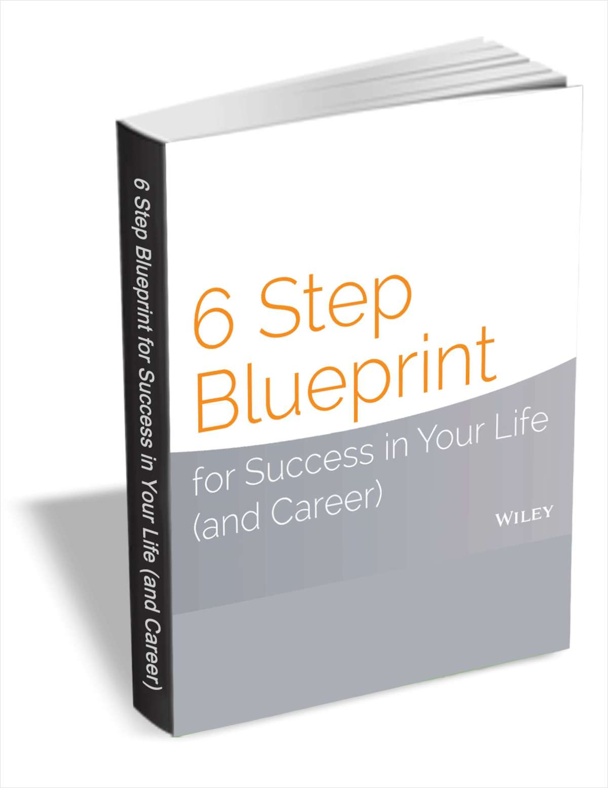 6 step blueprint for success in your life and career free wiley guide 6 step blueprint for success in your life and career malvernweather Choice Image
