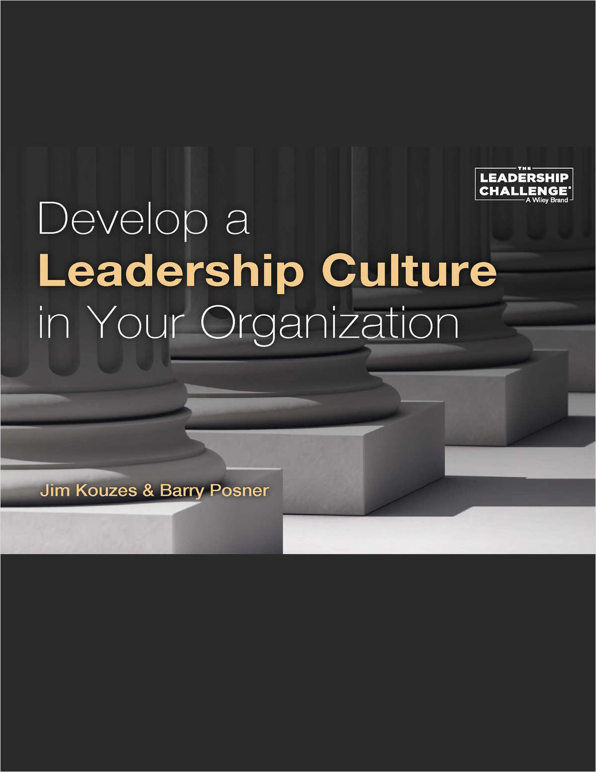Develop a Leadership Culture in Your Organization