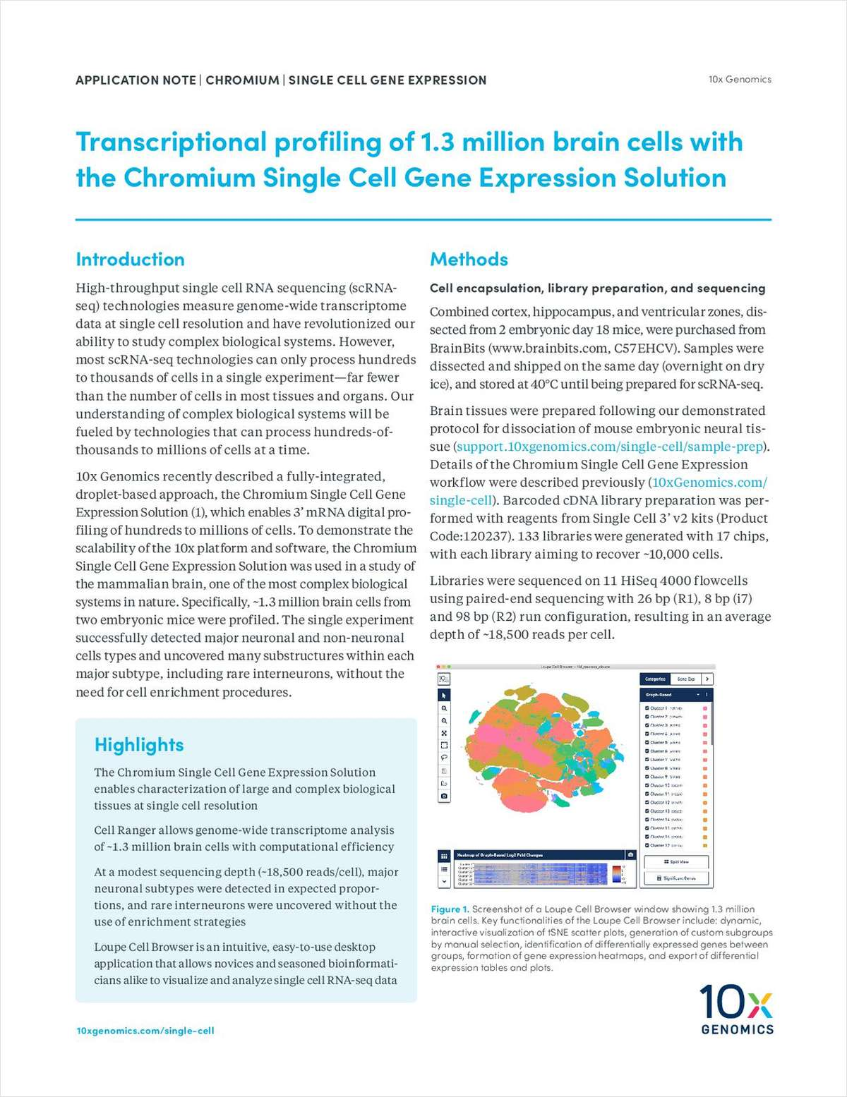 Transcriptional Profiling of 1.3 Million Brain Cells with the Chromium Single Cell Gene Expression Solution