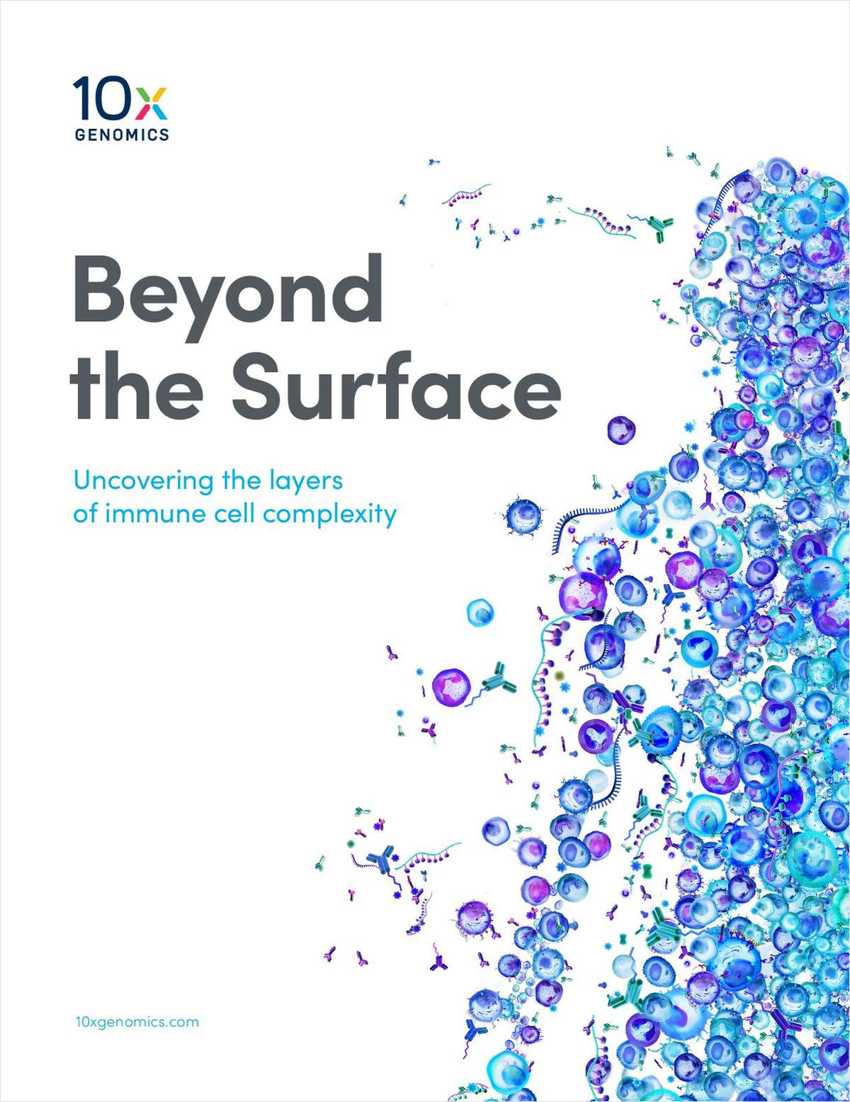 Beyond the Surface: Uncovering the Layers of Immune Cell Complexity