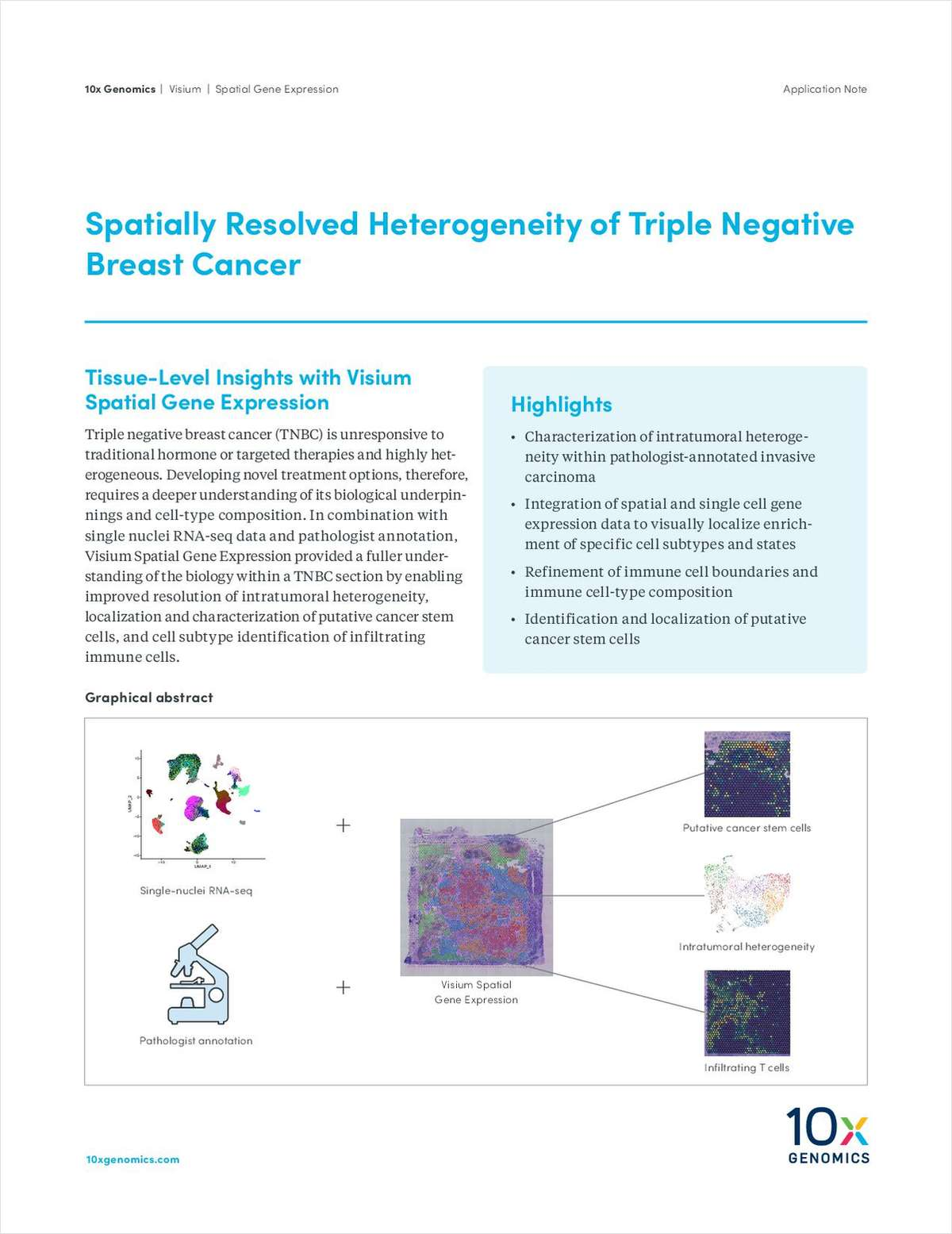 Spatially Resolved Heterogeneity of Triple Negative Breast Cancer