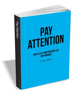 Pay Attention - How to Fill Your Everyday Life with Wonder